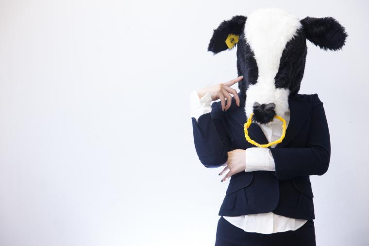 スーツの牛レディ